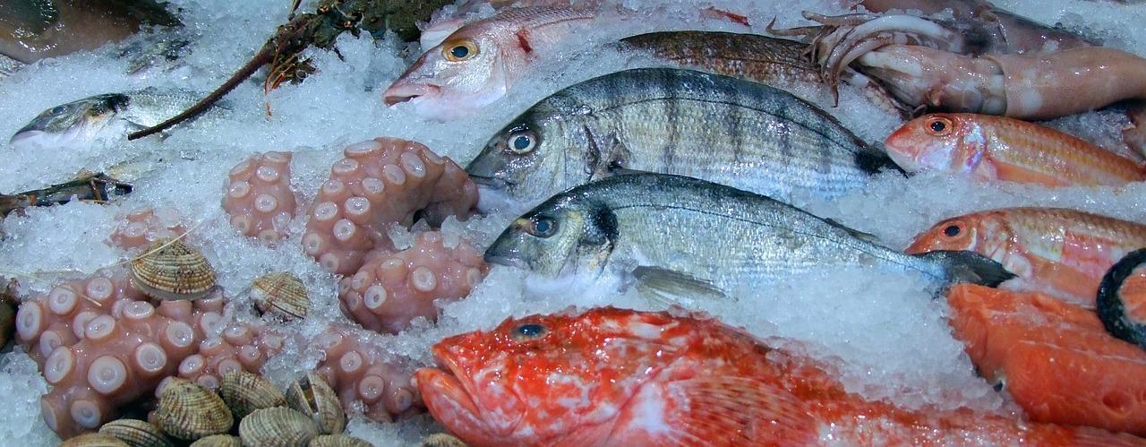 Welke vis kan ik roken?